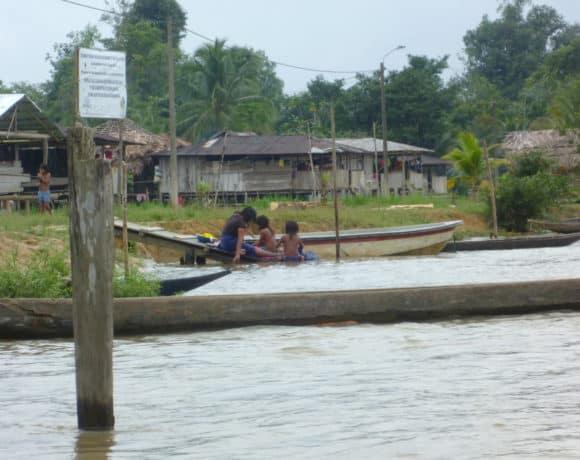 Mecanismos de Autoprotección: Comunidades Rurales y Defensores de Derechos Humanos en Colombia