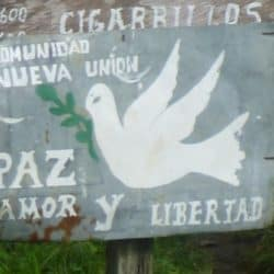 FARC Finalise Laying Down of Arms