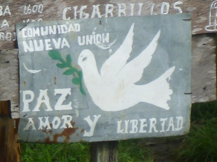 Lack Colombian Government Commitment to Security for Former Combatants?