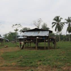 Humanitarian Crisis in Chocó Intensifies
