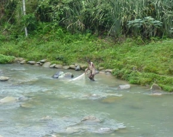 A River with Rights: Community Response to Illegal Gold Mining in Chocó, Colombia